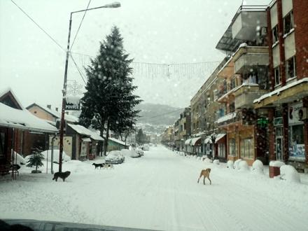 Ekstremno niske temperature. Foto: S. Tasić/OK Radio