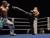 Kik bokseri u Nišu