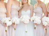 LE: Sve više venčanja