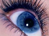 Boja očiju određuje prag bola