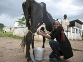 Šta obavezno mora da zna mis Ugande?