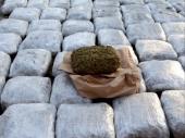 VEROVALI ILI NE: Prevozili tonu marihuane!