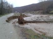 VODA ČUPA DRVEĆE: Dva sela ostala bez struje