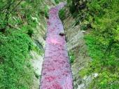 UPOZORENJE: Crvena Sobinska reka!