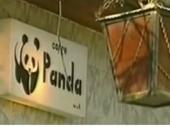 Slučaj Panda: Ko je ubio našu decu?