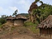Pleme koje jede mozgove postalo imuno na bolest