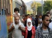 Povećana opasnost od bolesti zbog migranata