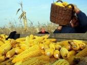 Vranje podstiče poljoprivredu