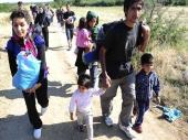 Za noć 7.000 izbeglica u Srbiji, sledi novi talas
