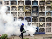 Florida: Vanredno stanje zbog zika virusa