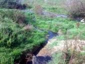 NASELJE PALESTINA: Kanalizacija kao izvor zaraze