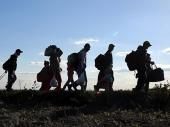 Han: Uhvaćeno 13 migranata, vozač pobegao