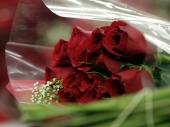 Buket cveća povećava želju za seksom