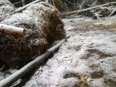ZABELELO KOD VRANJA: Pao prvi sneg